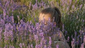 坐在淡紫色花和吸入花概念休闲的芬芳特写镜头面孔逗人喜爱的小女孩 股票视频