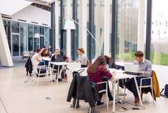 坐在现代图书馆和学习里的年轻成人学生 库存照片