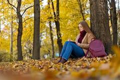 坐在秋天公园和thinkinig的女孩关于她的生活机智 免版税库存照片