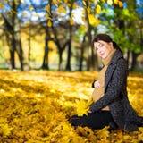 坐在秋天公园的愉快的年轻美丽的孕妇 图库摄影
