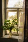 坐在窗口里面的花瓶 库存照片