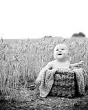 坐在篮子的愉快的婴孩户外 图库摄影