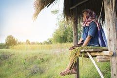 坐在米领域的客舱的老妇人农夫 免版税库存图片