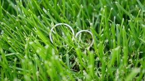 坐在绿草的两个人造白金婚戒 影视素材