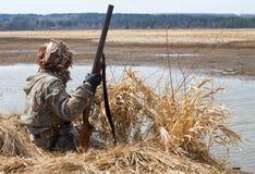 坐在芦苇旁边窗帘的鸭子猎人  库存照片