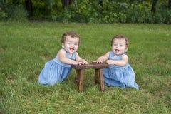 坐在草的同卵双生姐妹 图库摄影