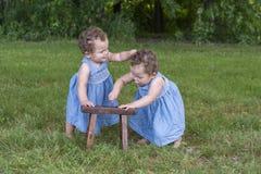 坐在草的同卵双生姐妹 免版税库存图片