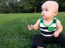 坐在草的小男孩拿着三叶草 图库摄影