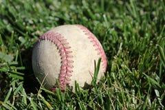 坐在草的棒球 图库摄影