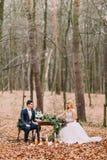 坐在葡萄酒桌上的美好的婚礼夫妇在秋天森林里 库存照片