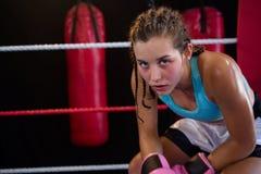 坐在角落的年轻女性拳击手画象  免版税图库摄影