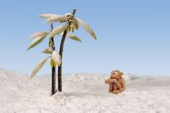 坐在雪的哀伤的黏土猴子在积雪的棕榈附近 免版税库存照片