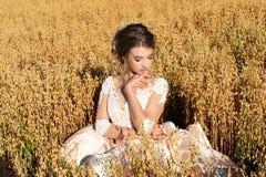 坐在黑麦的礼服的迷人的女孩 图库摄影