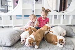 坐地毯和使用与小狗牛头犬的逗人喜爱的女孩 免版税图库摄影