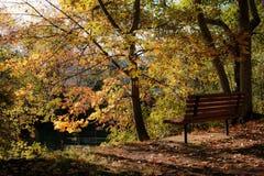 坐并且享受秋天 库存图片