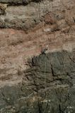 坐式下降法的登山人 免版税库存照片