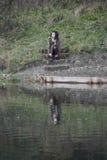 坐步的备选模型在水附近 图库摄影