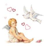 坐的天使、鸠和玫瑰重点 免版税库存图片