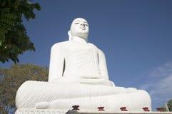坐的菩萨的一个大雕象 康提,斯里南卡 免版税库存照片