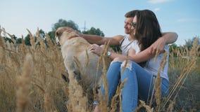 坐草在草甸和抚摸他的拉布拉多的年轻夫妇 家庭与他的宠物一起花费时间本质上 股票视频