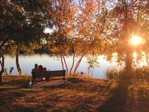 坐长凳在公园和享受吻合风景的老已婚夫妇由湖 免版税图库摄影
