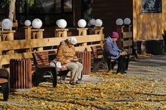坐长木凳和读一本书的资深妇女在Fili公园在莫斯科 库存照片