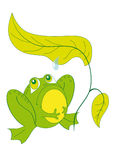 坐青蛙的页下 免版税库存图片