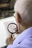 坐年长的人做纵横填字谜爱好 免版税库存照片