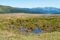 水水坑在山的 库存图片