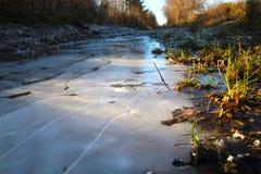 冻水坑在12月 免版税库存图片