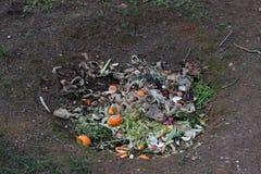 坑堆肥 免版税库存图片