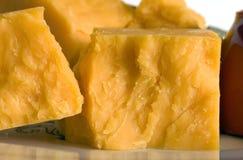 块切达乳酪 免版税库存图片
