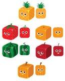 块果子 向量例证