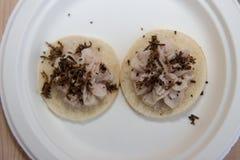 块菌和蘑菇意大利纤巧意大利欧洲 免版税库存图片