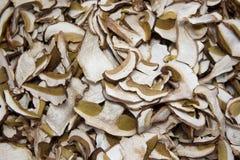 块菌和蘑菇意大利纤巧意大利欧洲 免版税库存照片