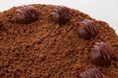 块菌巧克力蛋糕 免版税库存照片
