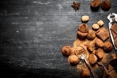 块菌状巧克力用可可粉和桂香 免版税库存图片