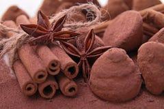 块菌状巧克力 免版税库存照片