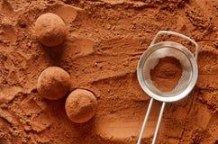 块菌状巧克力 图库摄影