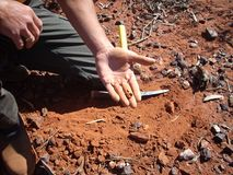 块金在11g的人` s手上在西澳州goldfields发现了  免版税图库摄影