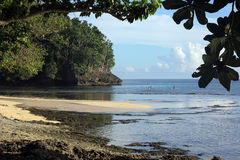坚固性南太平洋海滩 免版税库存照片