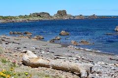 坚固性岩石突出入风平浪静在库克海峡的一个离开的海滩在惠灵顿,新西兰附近 库存照片