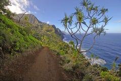 坚固性海岸线和峭壁沿考艾岛,夏威夷Kalalau足迹  库存图片