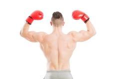 坚强和肌肉拳击手从后面 免版税图库摄影