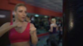 坚强的嬉戏夫人猛击的拳击袋子、训练肌肉和协调 影视素材