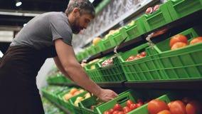 坚强的推销员佩带的制服在架子带来塑料盒蕃茄并且投入在超级市场在果子和 股票录像