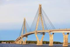 坚持的桥梁电缆 库存照片