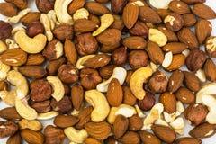 坚果、腰果、杏仁和榛子混合物  免版税库存照片