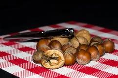 坚果和榛子在一张红色和白色桌布 免版税库存照片