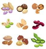 坚果和豆的汇集 免版税库存图片